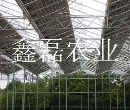 光伏板温室