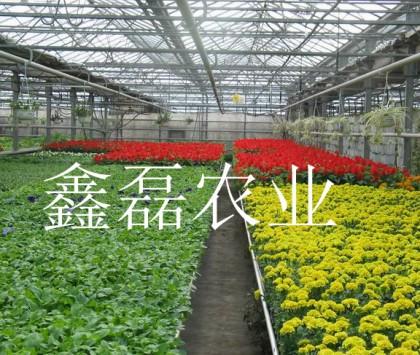 温室喷灌系统