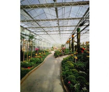 温室规划园区